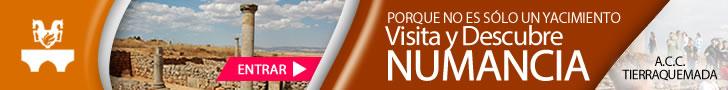 Enlace a visitas guiadas en Numancia