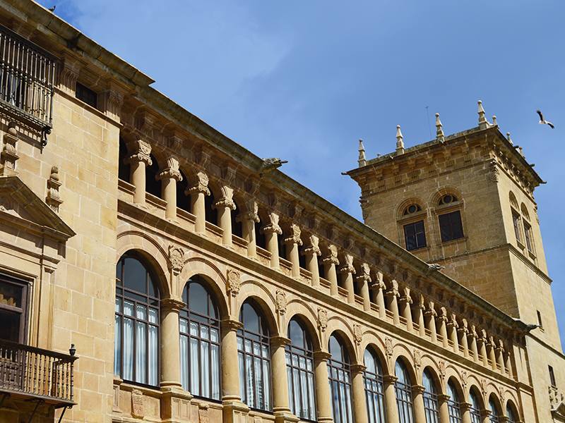 Torre y Palacio de los condes de Gómara