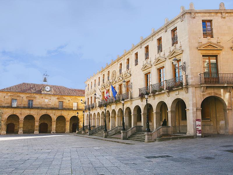 Ayuntamiento y al fondo el Palacio de la Audiencia