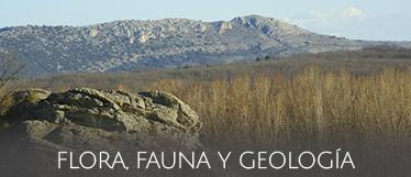 Flora, fauna y geología de Valonsadero