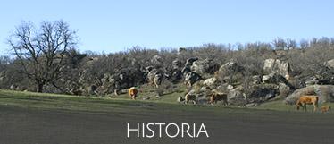 Historia del Monte Valonsadero