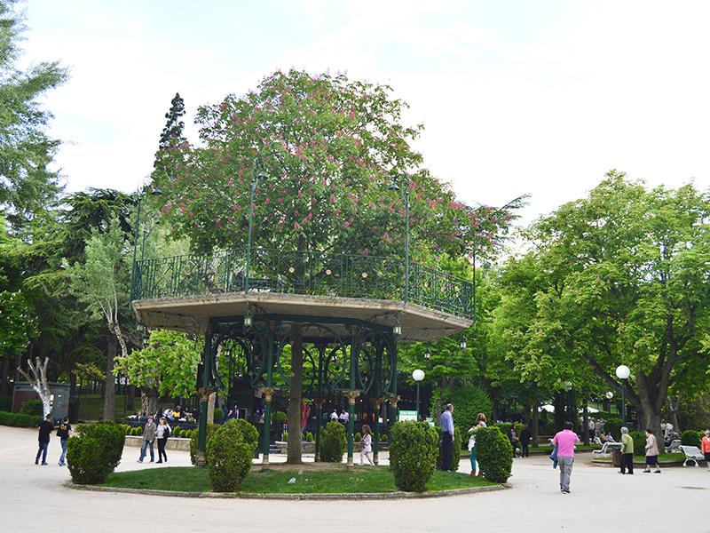 Árbol de la Música de Soria