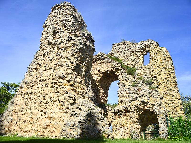 Ruinas entre el parque de Soria