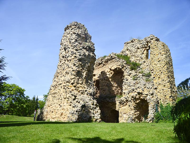Restos parciales en medio del parque de la ciudad de Soria