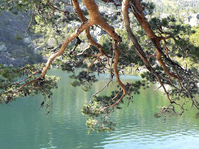 Turismo por la provincia de Soria. Laguna Negra y Urbión