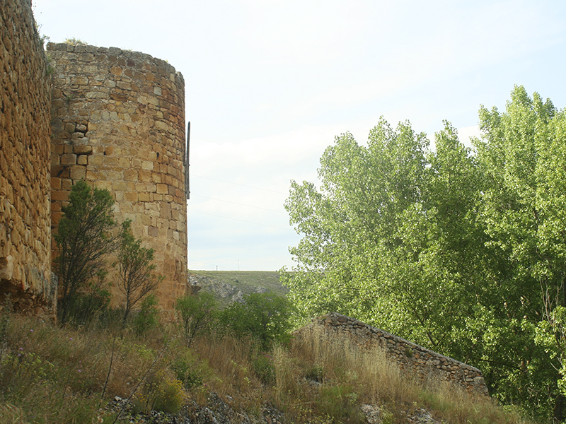 Tramo de muralla con torre