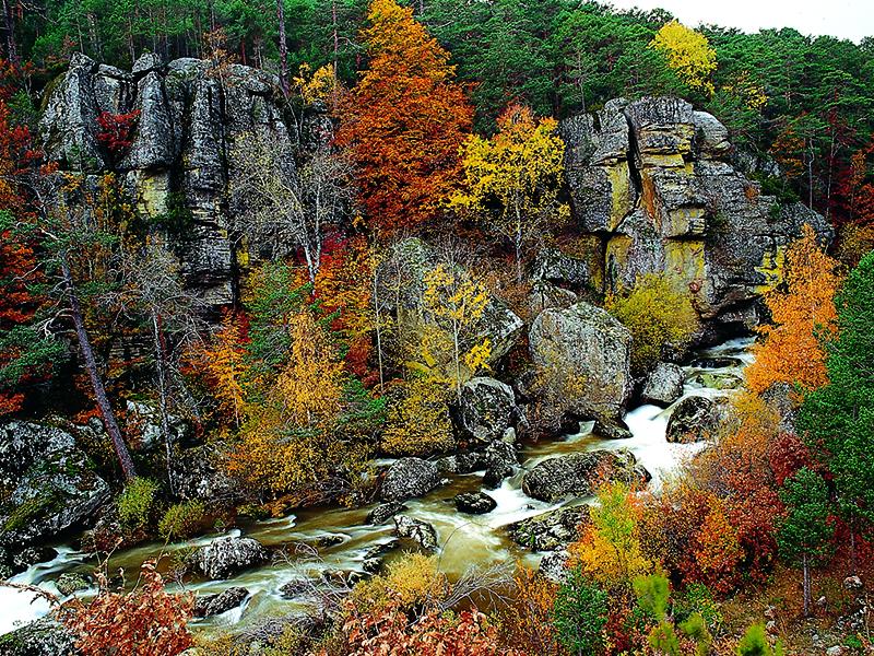 Turismo en Soria por las zonas verdes