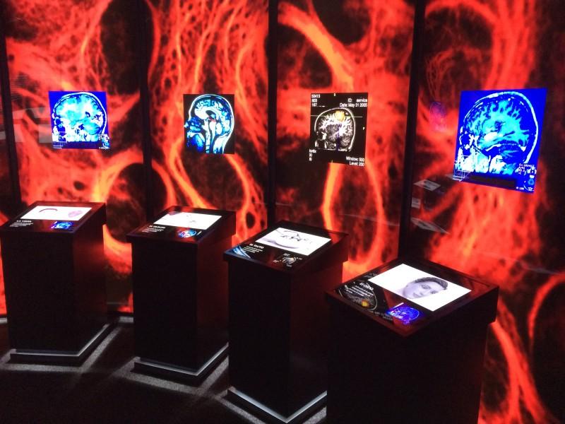 """La Obra Social """"la Caixa"""" y el Ayuntamiento de Soria presentan la exposición Ilusionismo, ¿magia o ciencia?"""