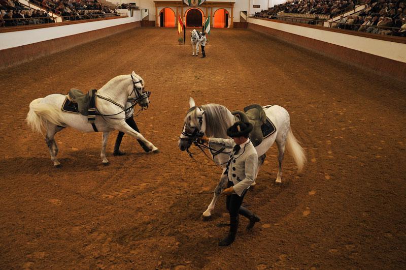"""La Real Escuela Andaluza de Arte Ecuestre ofrecerá un espectáculo con caballos de """"nivel internacional"""""""