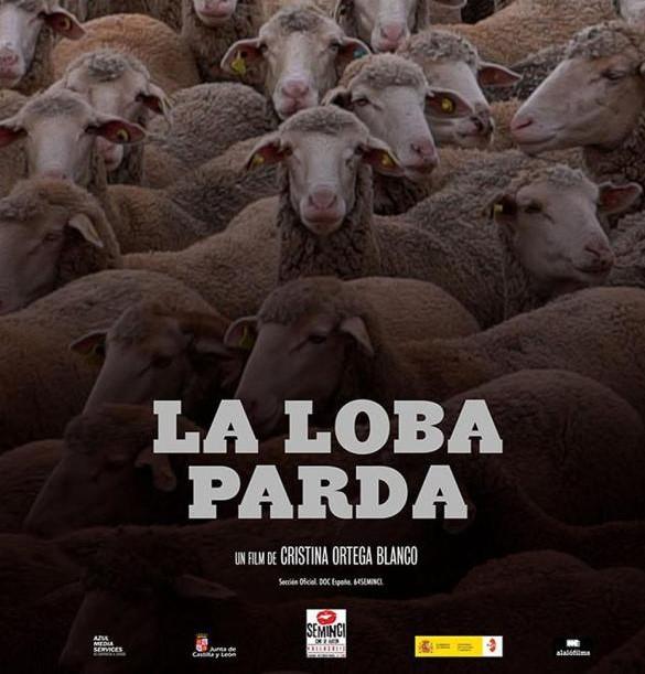 Cines Mercado programa del 15 al 21 de enero la Semana del Cine Documental con propuestas de temática muy variada y proyectos ligados al territorio