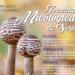 El Mercado Municipal convoca su concurso de fotografía micológica para destacar su valor medioambiental pero también gastronómico